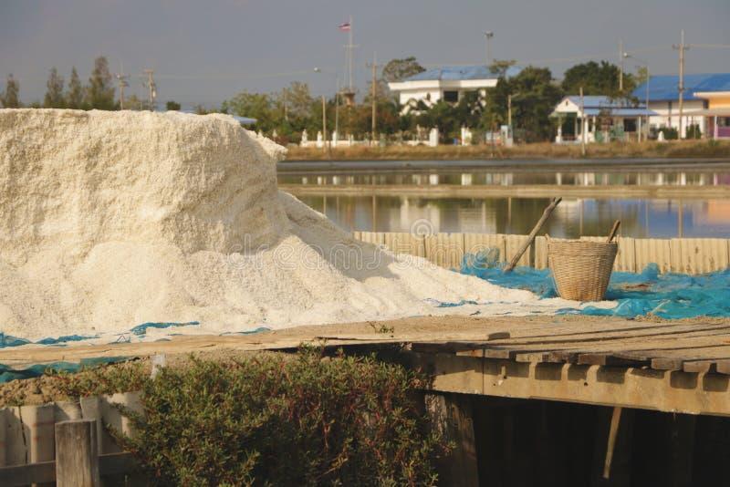 Huge Pile of Sea Salt with Wooden Basket stock image