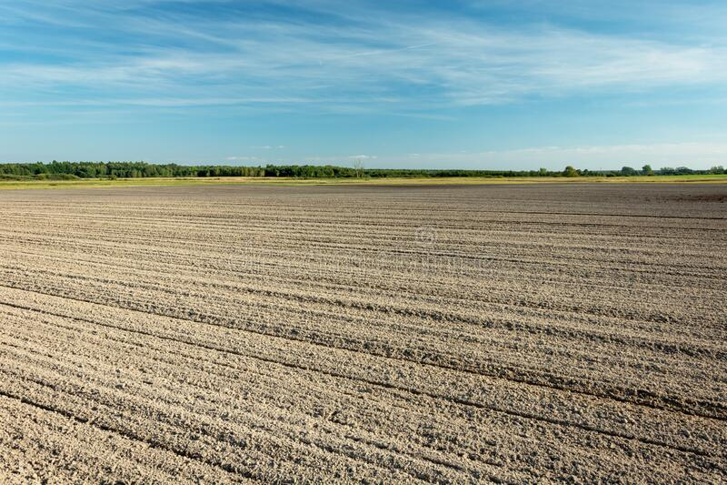 Huge plowed field, horizon and blue sky, rural view. Huge plowed field, horizon and blue sky, rural sunny view royalty free stock image