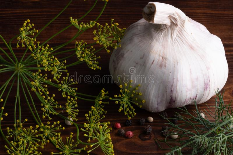 Huge, rustic garlic with black, white, red pepper, dill and parsley on old wooden table. Low key royalty free stock images