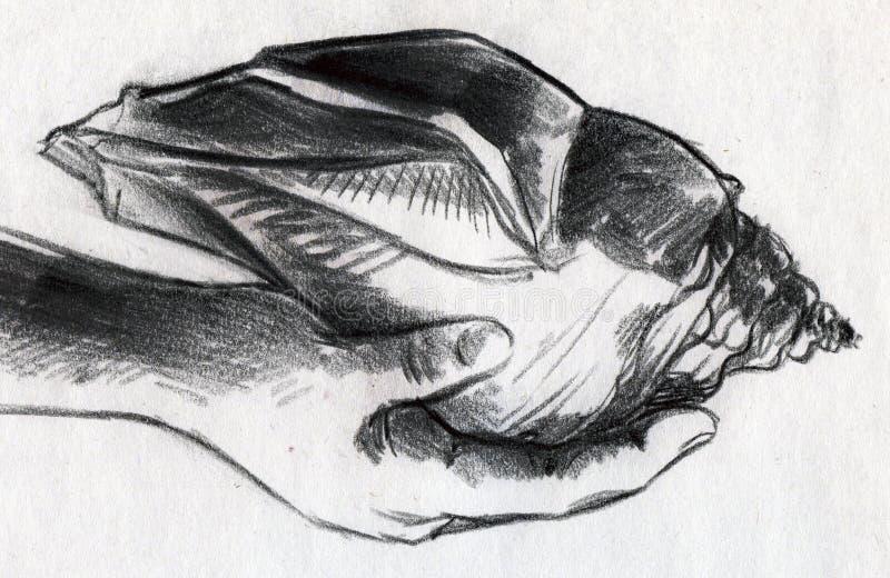 Huge sea shell in hand stock de ilustración