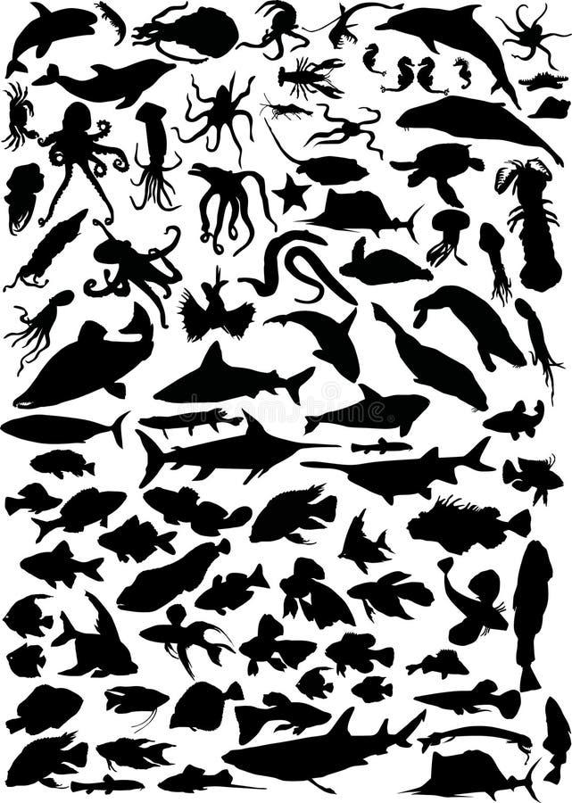 Huge set of sea animals royalty free illustration