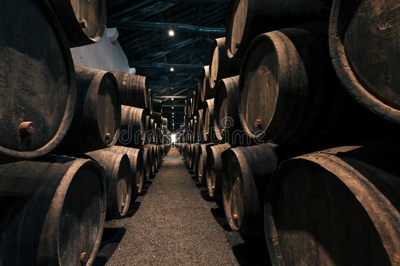 Huge spase with wooden barrels full of port wine inside traditional winery. Dark cellar for winemaking, Portugal royalty free stock photography