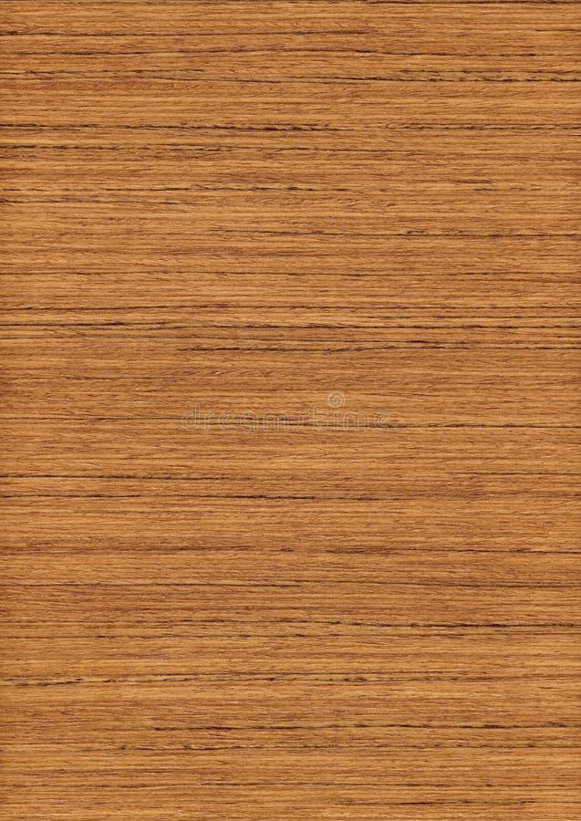 Huge teak wood texture stock photo image of floor swatch