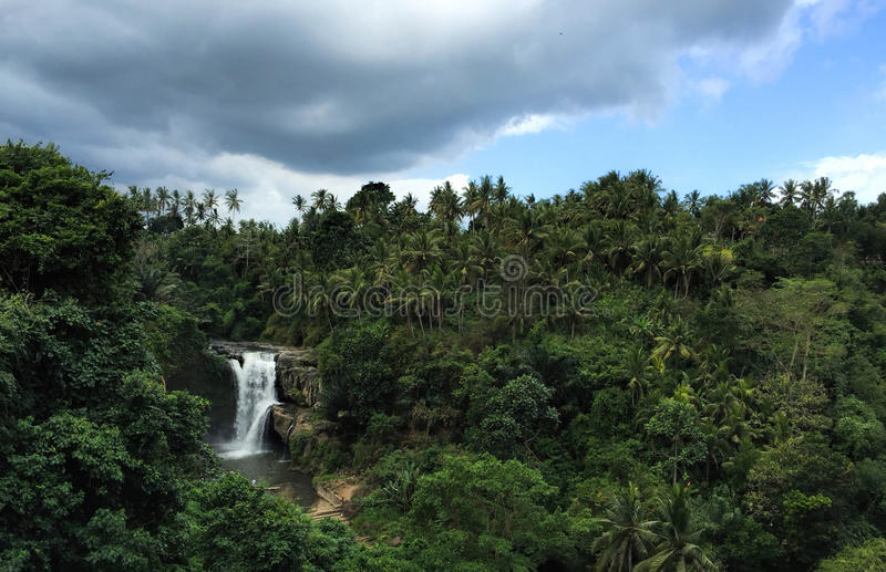 Huge waterfall in tropical forest. Bright exotic nature with fresh water stream. Dark green trees and white waterfall under cloudy sky. Distant lake and stock images