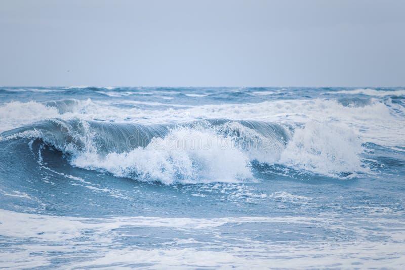 Big waves at the danish north sea coast royalty free stock images