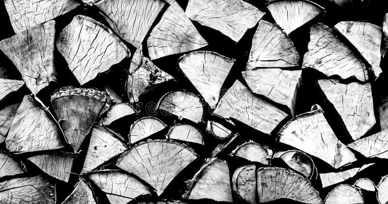 Huggen av träcloseup i svartvitt royaltyfria foton