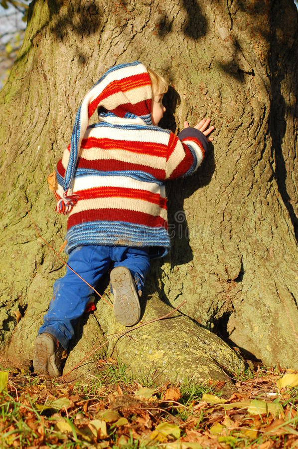 Free Hugging A Tree Royalty Free Stock Photography - 27759547