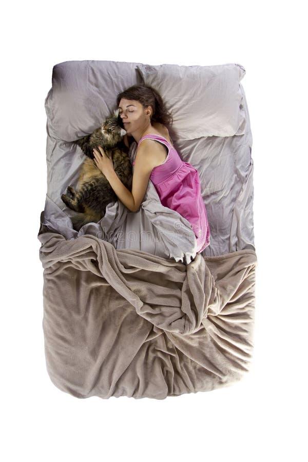 Hugging Pet stock images