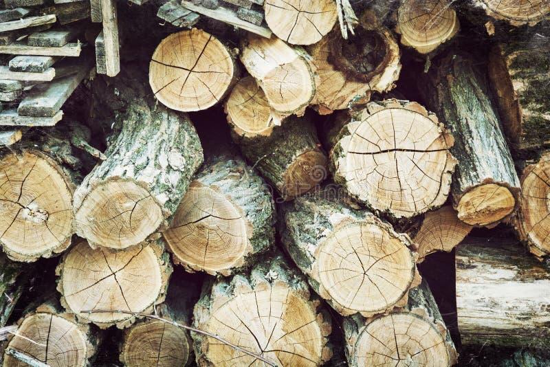 Huggit av trä i lantgården royaltyfri foto