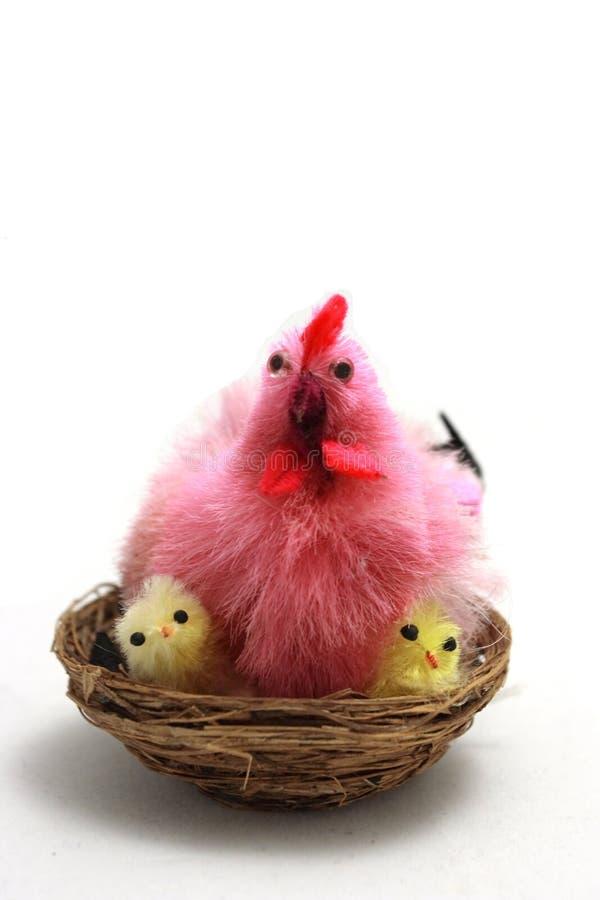 Huhn auf Nest stockfotos