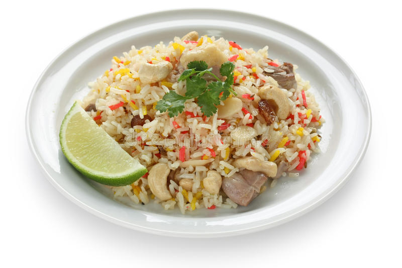 Huhn biryani, indischer pilau Reis lizenzfreie stockfotografie