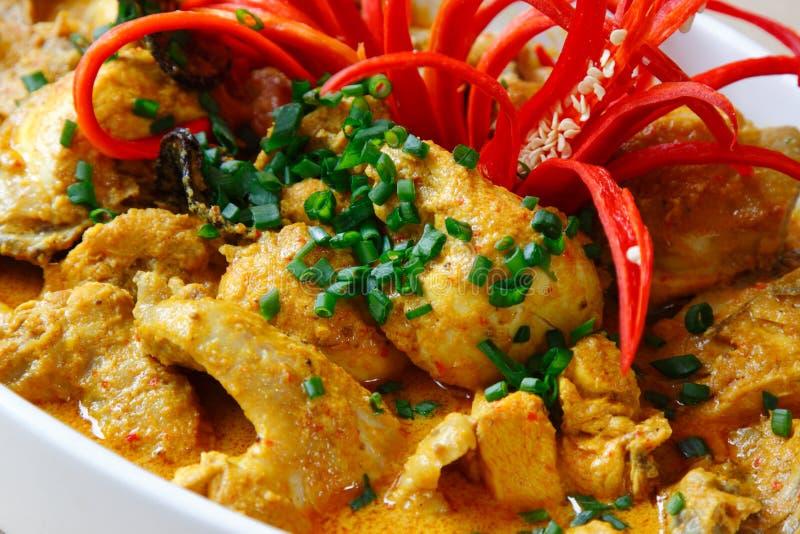 Huhn-Curry lizenzfreie stockfotos