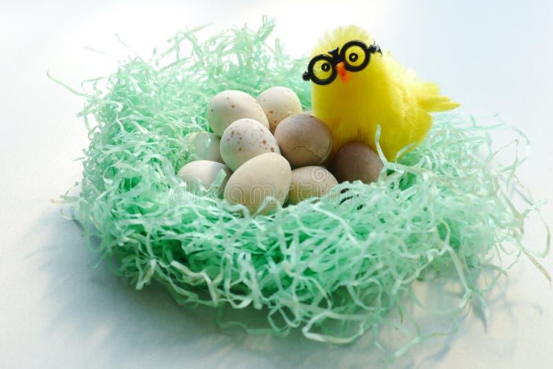 Huhn, das im Nest steht lizenzfreie stockfotos