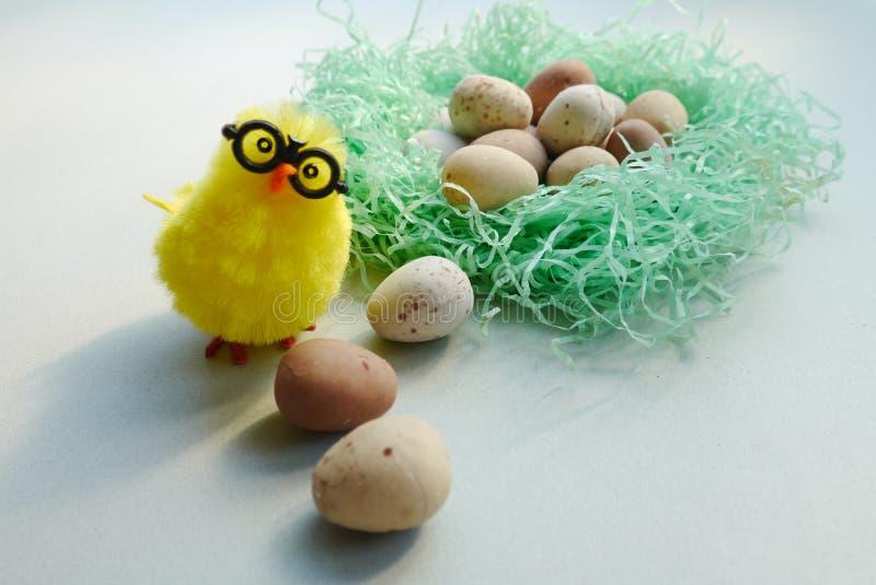 Huhn, das oben aus dem Nest heraus schaut lizenzfreie stockfotografie