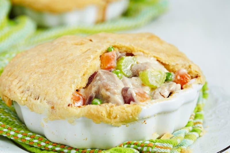Huhn-Fleischpastete lizenzfreie stockbilder