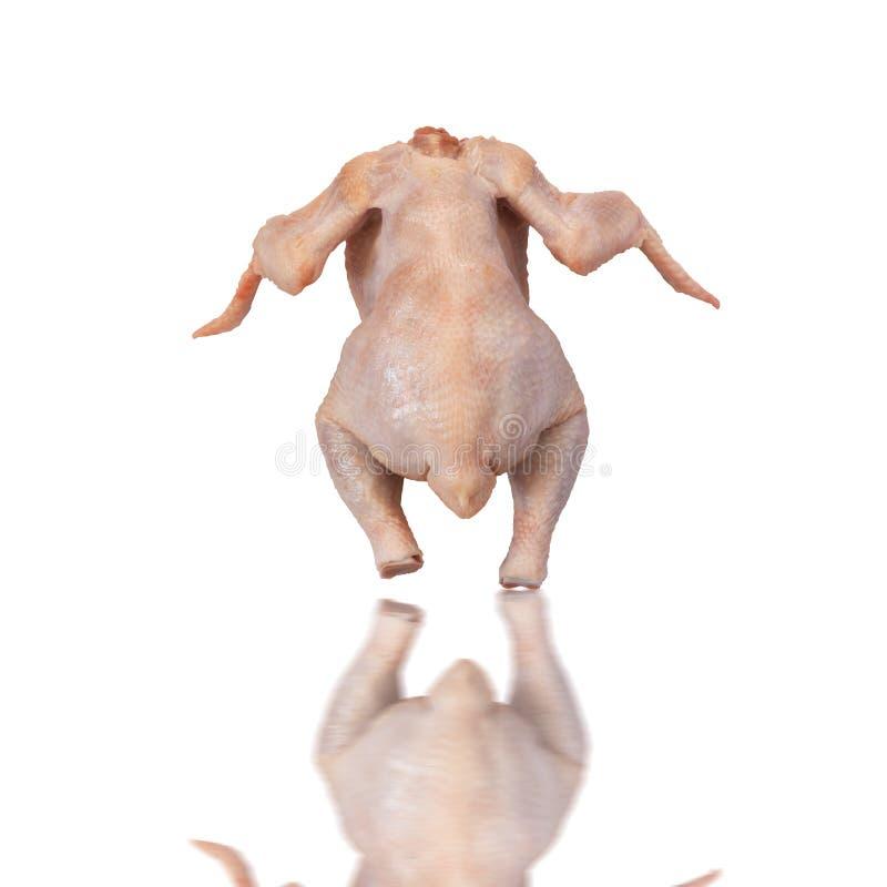 Huhn getrennt stockbild
