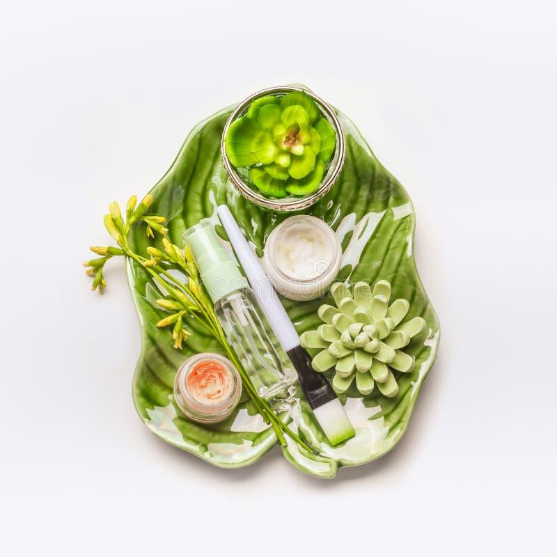 Huidzorg het plaatsen Kruiden kosmetisch concept Groene bladeren en succulents met cosmetischee producten en toebehoren stock foto's