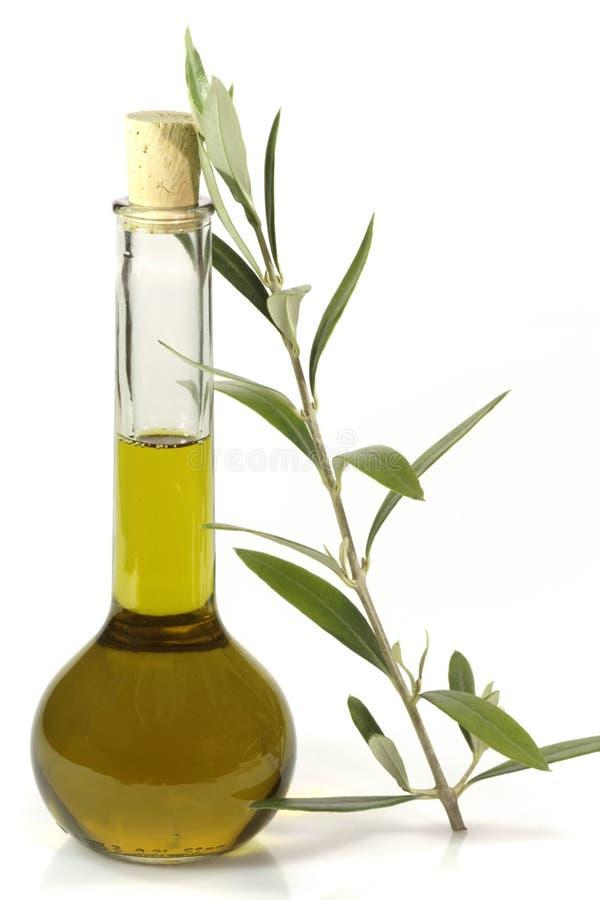 Huile d'olive avec la branche d'olivier photos libres de droits