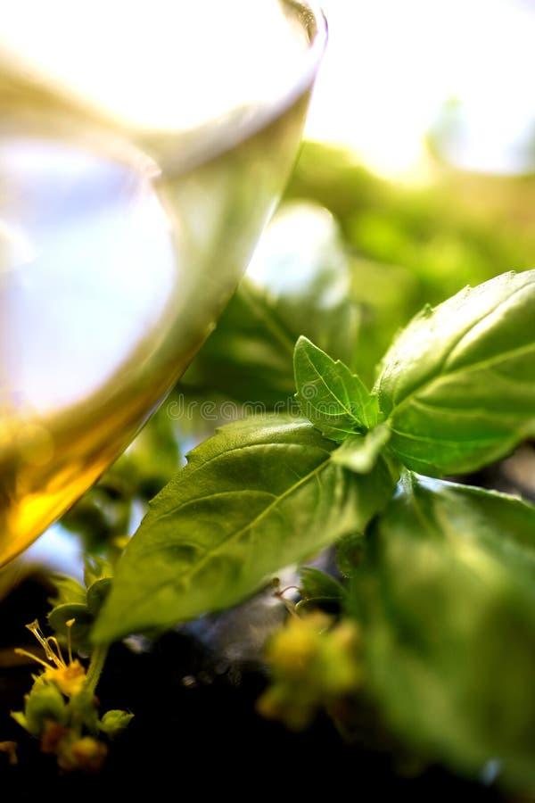 Huile d'olive avec le basilic frais image stock