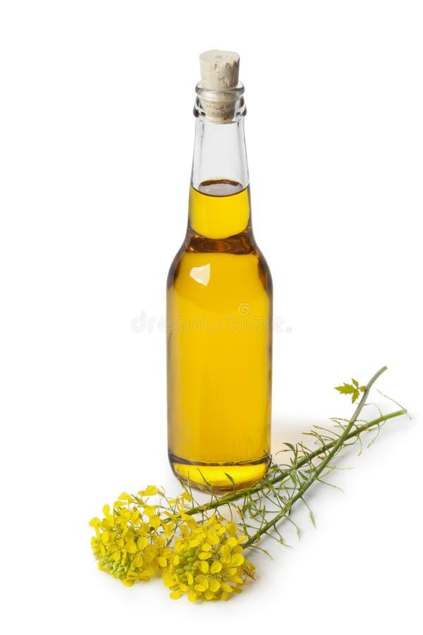 Huile de graine de colza dans une bouteille images libres de droits