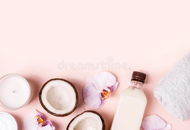 Huile de noix de coco et moitiés de noix de coco fraîche sur un fond rose Concept de station thermale de soins capillaires images libres de droits