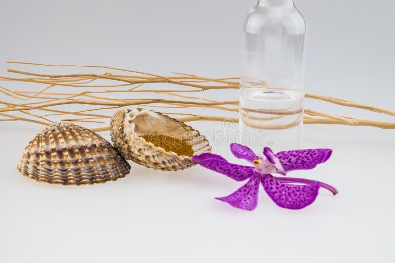 Huile de noix de coco, bâton et coquillage en bois et orchidées roses de mokara photos stock