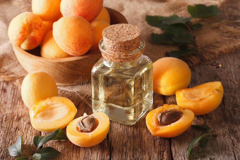 Huile de noyau d'abricot en plan rapproché en verre et ingrédients de pot Horiz photo libre de droits