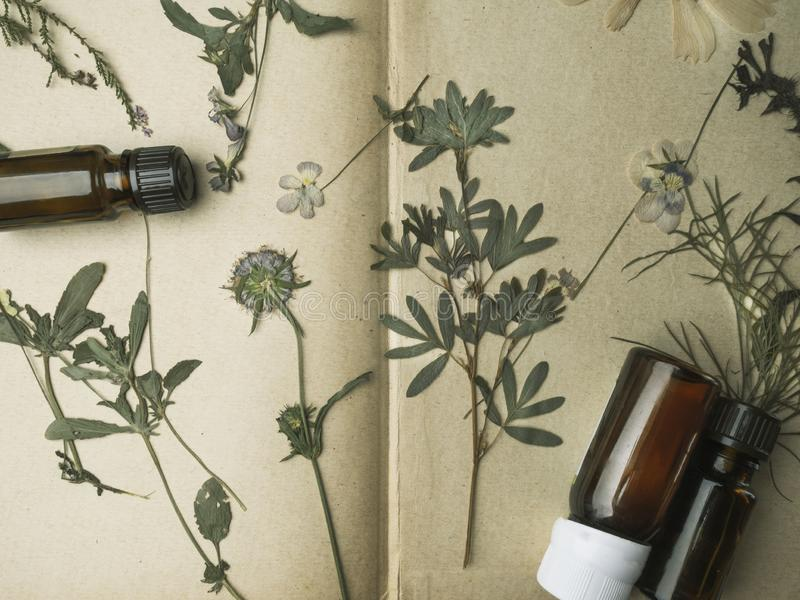Huile essentielle d'arome Bouteille de vue supérieure parmi les fleurs sèches, herbes médicinales Cosmétique et soins de la peau  photographie stock libre de droits