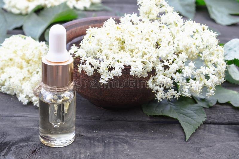 Huile essentielle de baie de sureau ou extrait de la teinture avec des fleurs de baie de sureau sur un fond en bois photographie stock libre de droits