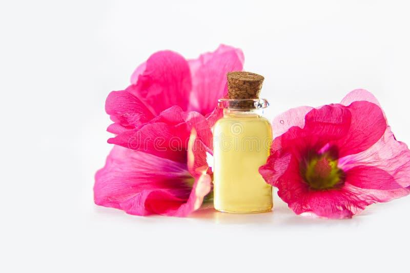 Huile essentielle de mauve dans la belle bouteille sur le fond blanc photo stock