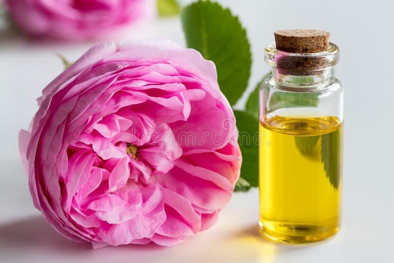 Huile essentielle de Rose : une bouteille d'huile avec une fleur de rose image stock