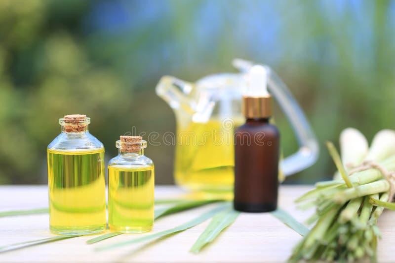 Huile essentielle de sch?nanthe dans des bouteilles en verre sur le fond vert naturel photos libres de droits