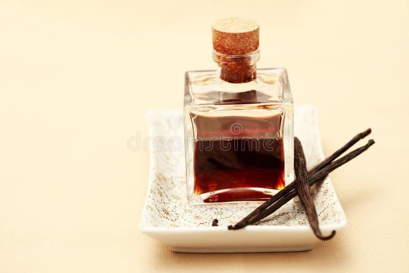 Huile essentielle de vanille photo stock