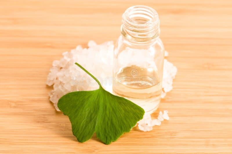 Huile essentielle et sel de lames de biloba frais de ginko photo stock