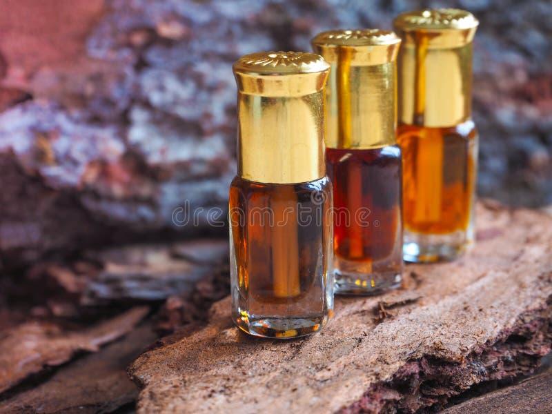 Huile naturelle de sapin dans une mini bouteille Une huile de massage images libres de droits
