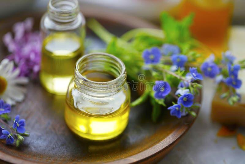 Huiles de plantes herbacées, médecine alternative à base de plantes, bouteilles d'huile images libres de droits