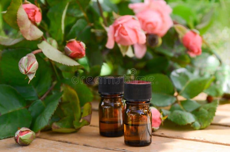 Huiles essentielles avec les fleurs roses photo stock