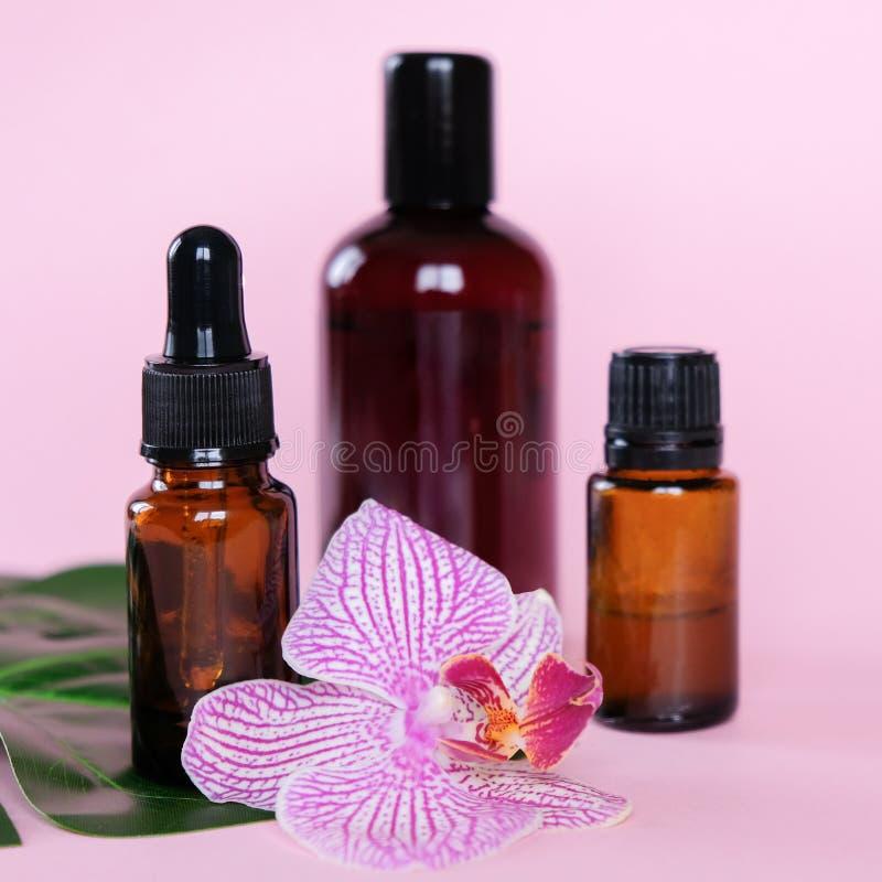 Huiles essentielles , diverses bouteilles aromathérapie sur fond rose Aromathérapie et concept de parfums image libre de droits