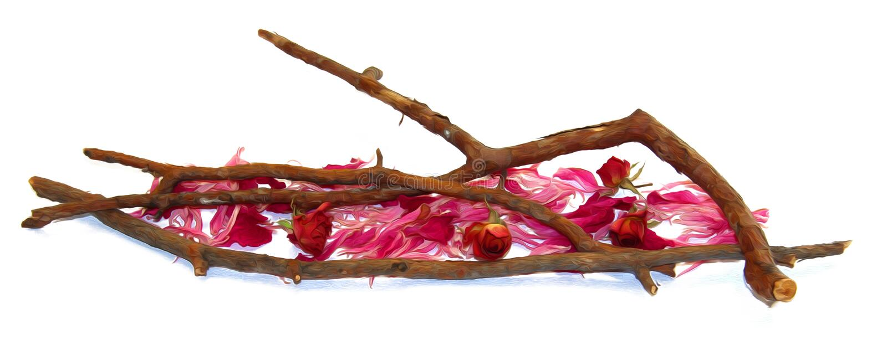 Huilez la rose de rouge d'aspiration, élément d'isolement par fowers secs de chute illustration de vecteur