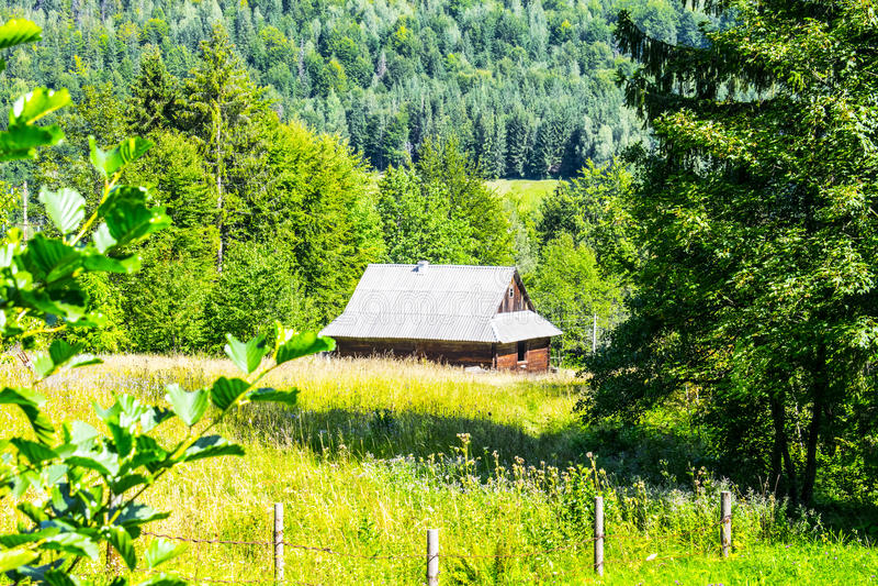 Huis door het bos stock afbeeldingen