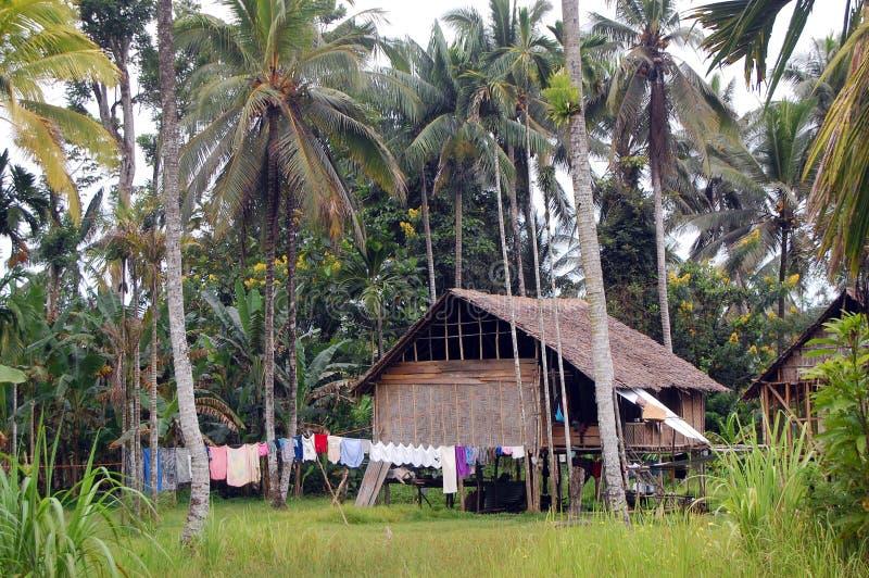 Huis in dorp Papoea-Nieuw-Guinea royalty-vrije stock afbeelding