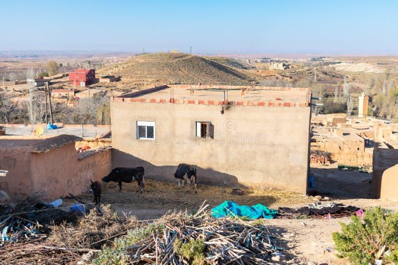 Huis in een Landelijk Dorp in Midelt Marokko met Koeien en een Ezel royalty-vrije stock afbeeldingen