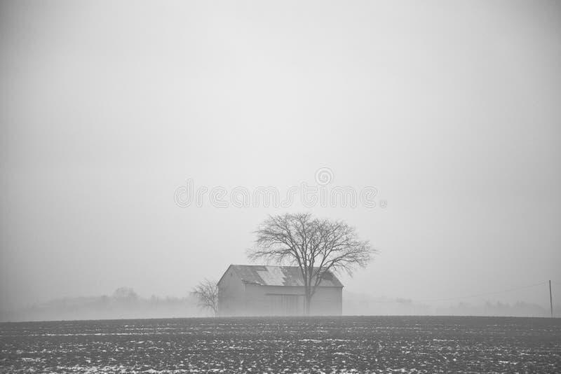 Huis en boom stock foto