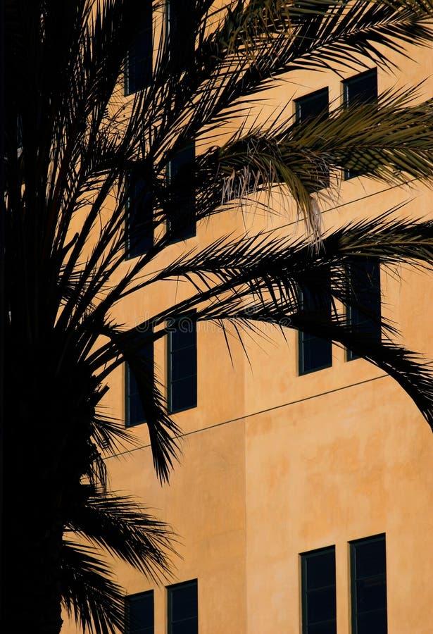 Huis En Een Palm Royalty-vrije Stock Afbeeldingen