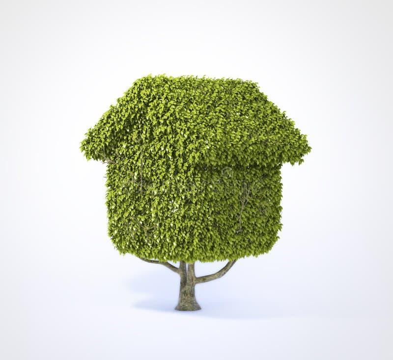 Huis gevormde boom stock fotografie