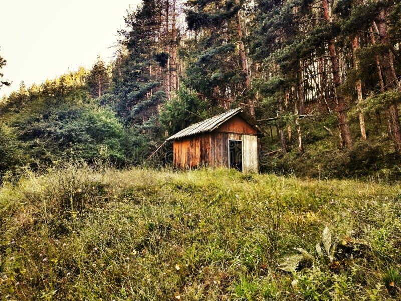 Huis in het bos royalty-vrije stock fotografie