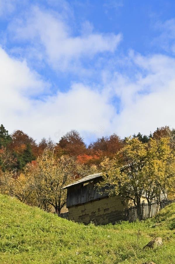 Huis in het bos stock foto's
