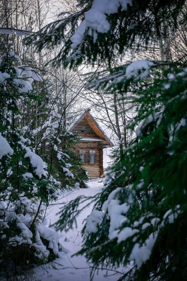 Huis in het de winterbos royalty-vrije stock foto