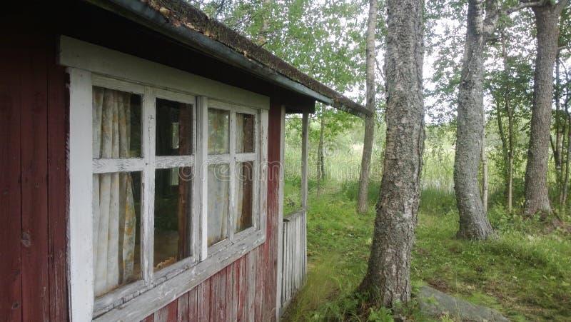 Huis in het hout stock foto's