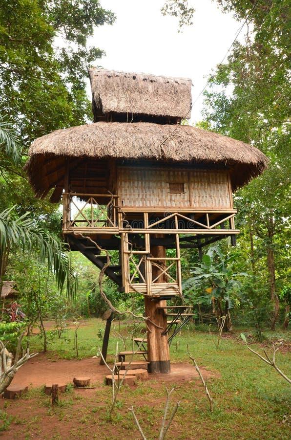 Huis op boom één pijler voor een bos royalty-vrije stock foto's